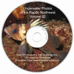 Under water photo CD 02 with images for wall paper